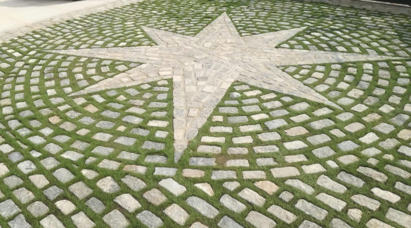 Estrella panots 4